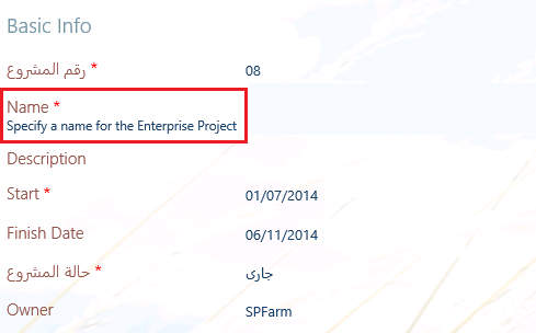 Remove Project Name description inside Project Details Page in Project Server