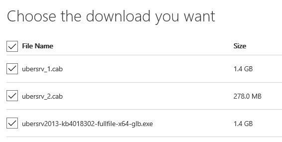 Update SharePoint Server - Which file should I download