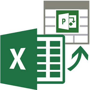 import excel to project server
